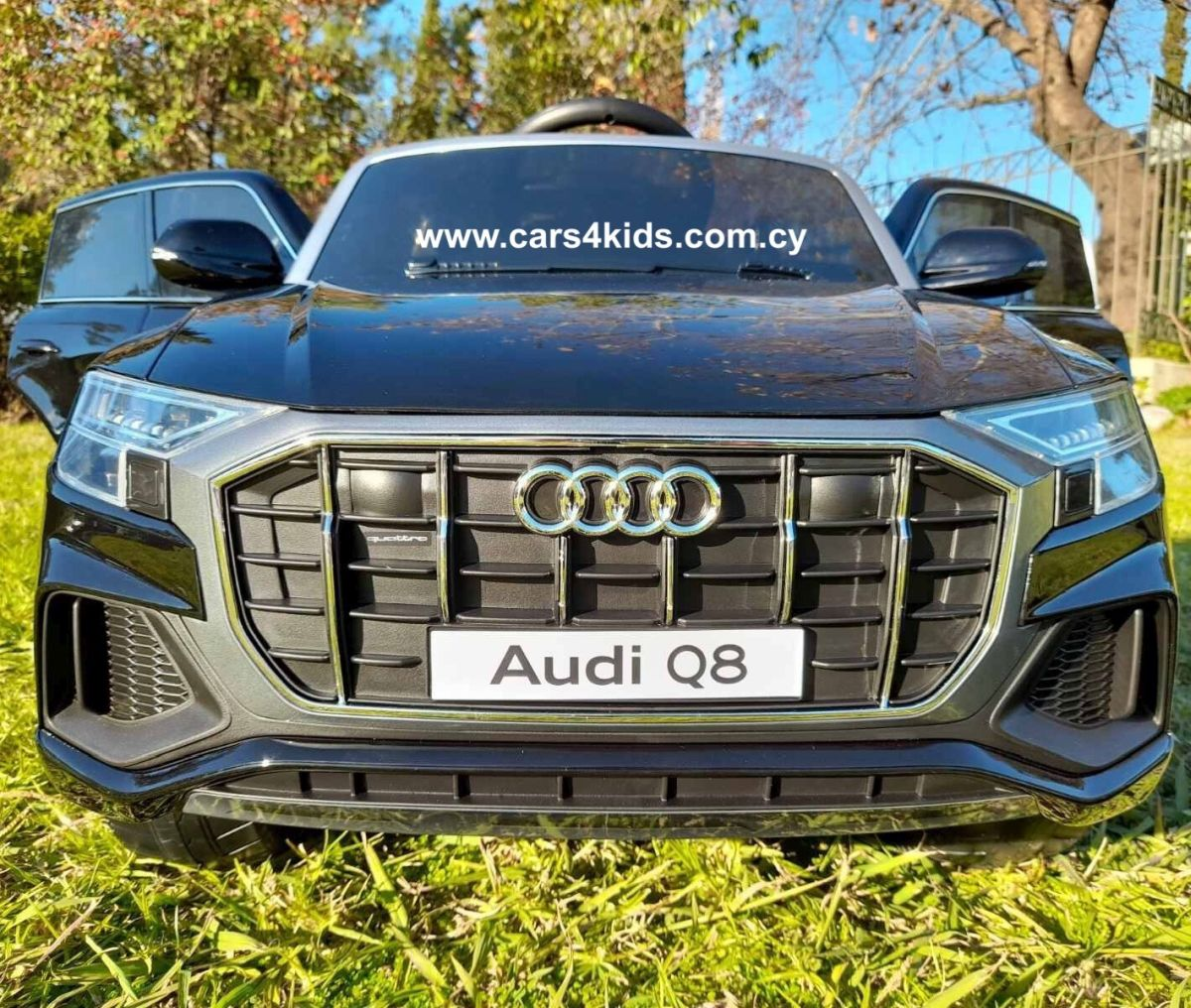 Audi Q8 Painting Black with 2.4G R/C under License